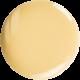 08-golden-Ivory